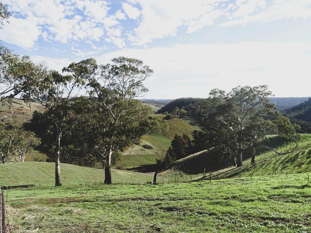paisajes de campo en Australia, Adelaide