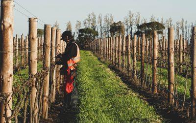 Trabajar en Australia: Datos y Consejos