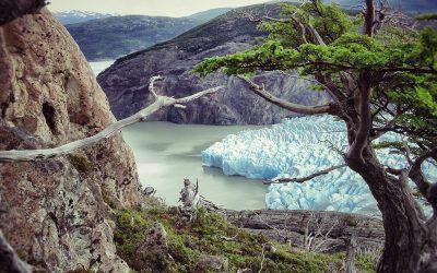 Circuito O Torres del Paine – El camino de no retorno