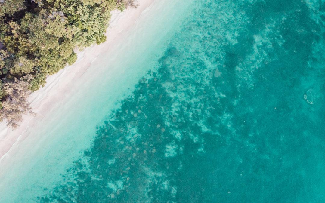 SEGUNDO AÑO WORKING HOLIDAY AUSTRALIA: guía paso a paso para obtener tu extensión en Australia