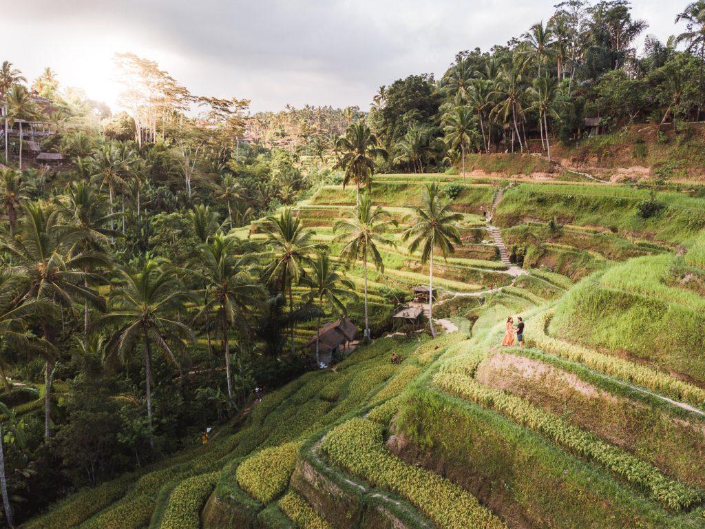 terrazas de arroz Tegallaland en Ubud, Bali