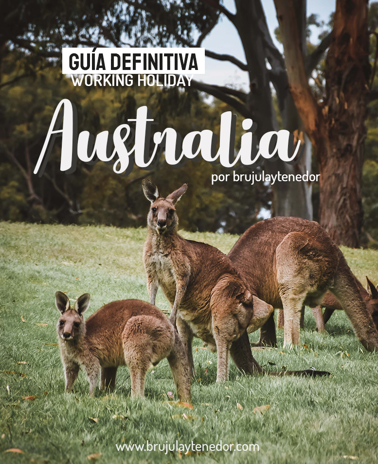 guia definitiva working holiday australia