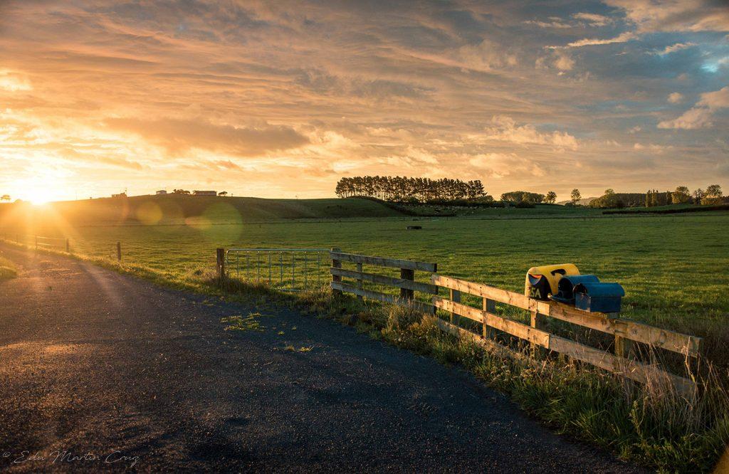campo en Nueva Zelanda