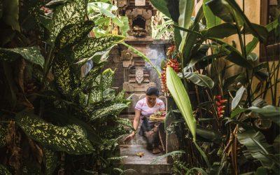 Guía Ubud – Qué ver y qué hacer en el corazón de Bali