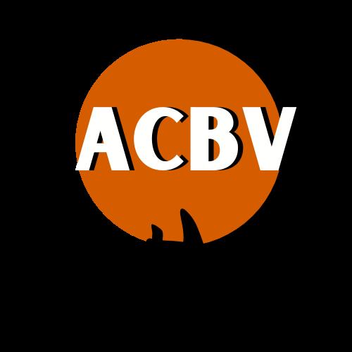 agrupacion chilena de blogueros de viajes