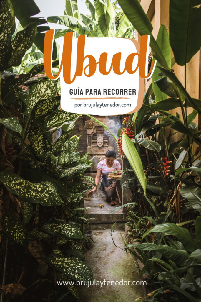 Guia que hacer en Ubud Bali