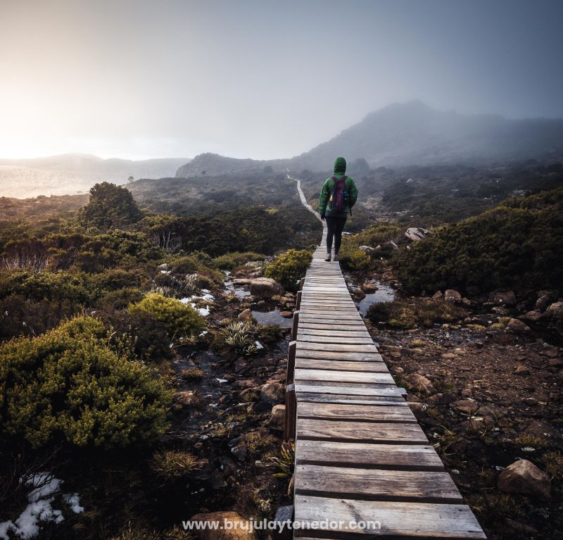 caminar por las pasarelas de los parques nacionales es aportar al turismo sustentable