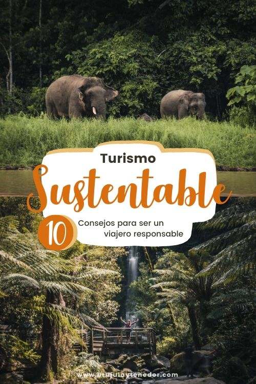 turismo sustentable pin de pinterest