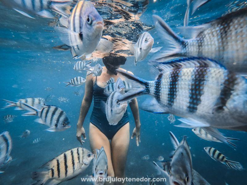 tener cuidado con el agua es muy importante y aporta al turismo sustentable