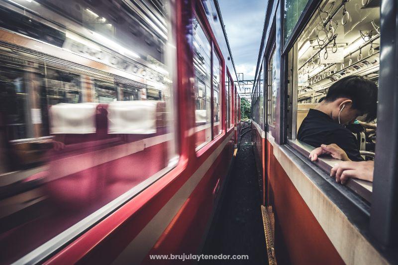 prefiere el tren como medio de transporte