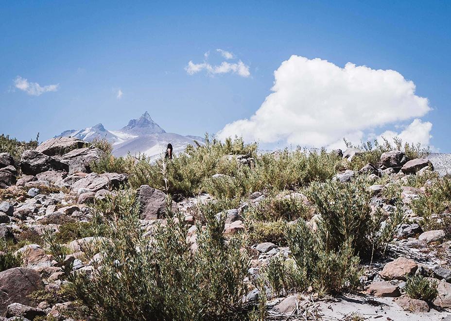 Valle del indio, sendero El Bolsón, Maule, Chile